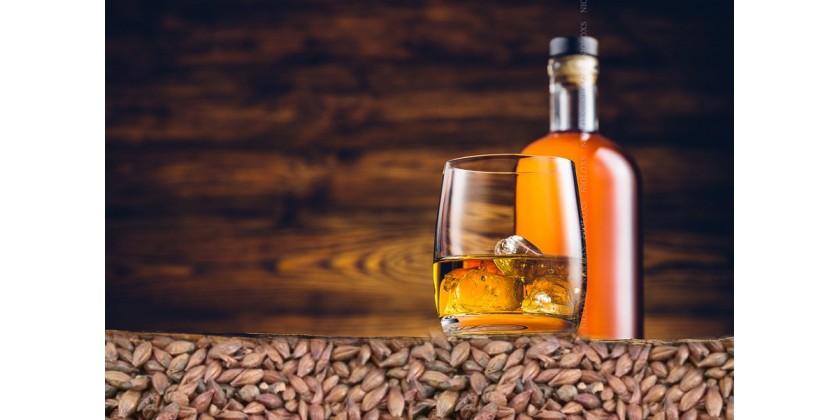 Солод ячменный для виски своими руками 43